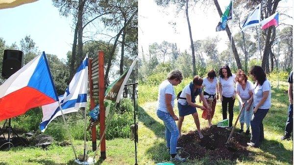 Česká společnost přátel Izraele 192598-top_foto1-m8ela Masarykův les v Izraeli se díky českým dobrovolníkům opět zelená Kultura Novinky